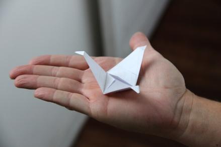 Proceso Línea Origami